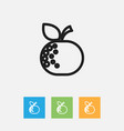of food symbol on citrus vector image vector image