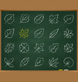 organic leaf chalk draw line icons set vector image vector image