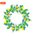 wreath of leaves and fruits isolated on white vector image