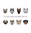 Set icons dogs vector image