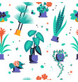abstract seamless pattern with home plant vector image