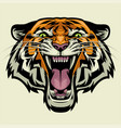 angry tiger head vector image vector image
