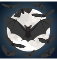 bats and moon vector image