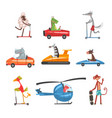 collection of funny animal characters using vector image vector image