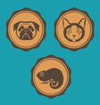 Dog cat and iguana emblem design vector image