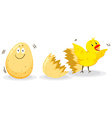 Egg and little chick vector image vector image