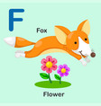 isolated animal alphabet letter f-fox-flower vector image