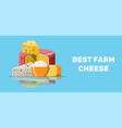 set of milk cheese products vector image vector image