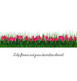 tulip and grass decoration element vector image