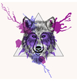 Walf face in triangle frame with watercolor ink vector image