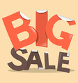 Big Sale Labels - Stickers in Retro Style vector image