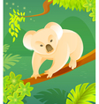 Cute cartoon koala vector image vector image