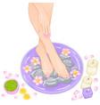 foot bath vector image vector image