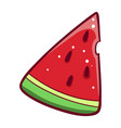slice watermelon icon green summer berry vector image