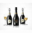 wineglass with black wine bottles of champagne vector image vector image