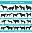 working dogs silhouettes vector image vector image