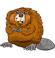 beaver animal cartoon vector image vector image
