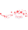 flying petals abstract background cosmetics vector image vector image