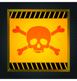Sign of the mortal danger vector image