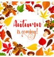 autumn poster with fall season forest nature frame vector image vector image