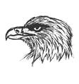 bold eagle vector image vector image