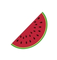 Delicious watermelon fruit isolated icon vector image vector image