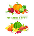 Fresh organic healthy vegetables and fruits