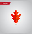 isolated linden flat icon frond element vector image vector image