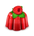 Raspberry jelly detailed vector image