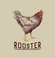 rooster drawn in hand drawn style vector image