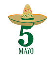 text with a traditional mexican hat cinco de mayo vector image