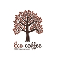 Hand drawn graphic coffee tree with grains vector image