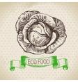 Hand drawn sketch cabbage vegetable Eco food vector image vector image