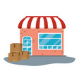 store with boxes vector image vector image