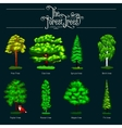 Summer Green Forest Tree isolated on dark vector image vector image