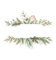 watercolor christmas banner with fir