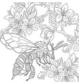 bee coloring page vector image