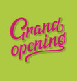 hand drawn colorful lettering grand opening with vector image
