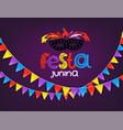 masquerade concept festa junina vector image