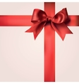 Red Gift Ribbons with Bow vector image