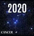 symbol cancer zodiac sign with new year vector image vector image