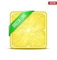 Square slice of lemon Green Line vector image