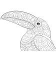 adult coloring bookpage a cute toucan on the vector image vector image