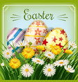 easter card with eggs and flowers with grass vector image