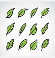 leaves icon set on white backgroundcollection vector image vector image
