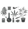 marijuana glyph isolated icon set vector image