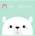 polar white bear cub sad face merry christmas