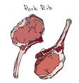 row pork ribs realistic vector image vector image