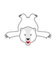 white bear skin bearskin of polar bear of wild vector image