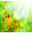 autumn background with colorful leaves and place f vector image vector image